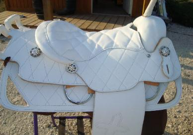 trick saddles, trick riding saddles and horse for sale